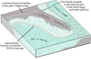 Florida Platform